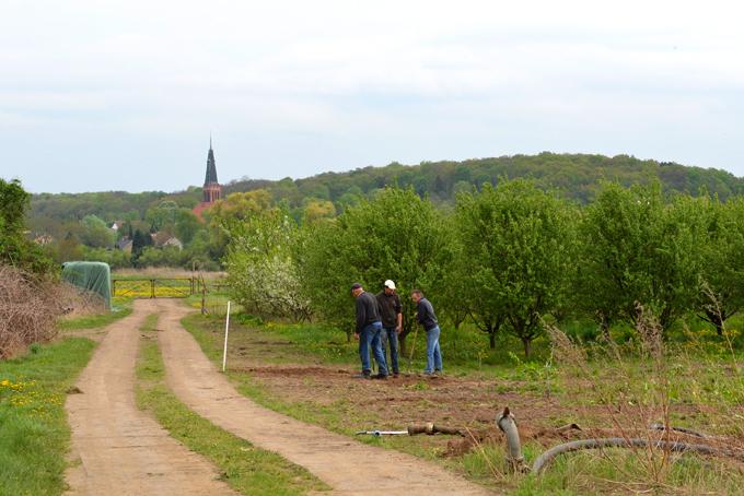 Blick nach Bornstedt